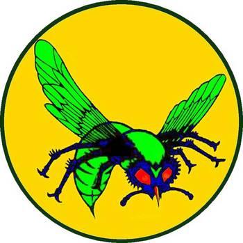 green_hornet2_op_800x798.jpg